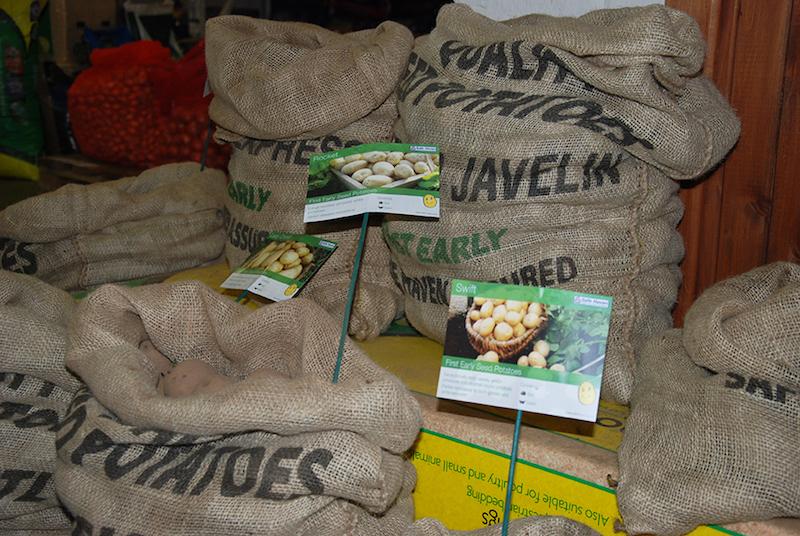 Potatoes South Wingfield