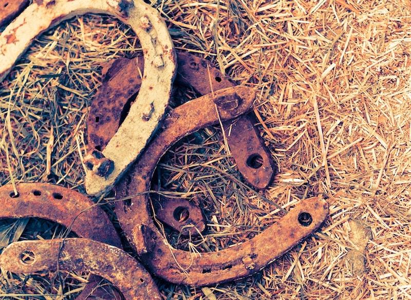 Rusty Horse Hooves