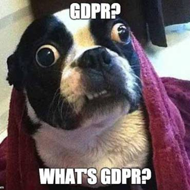 Our top GDPR-related animal memes